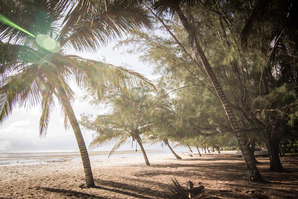Camping on Tiwi Beach, Kenya
